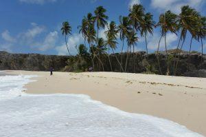 Große Inseltour Barbados
