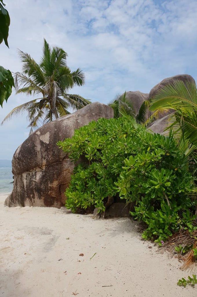 Seychellen Praslin & La Digue