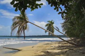 Tortuguero-Kanäle und Cahuita Nationalpark